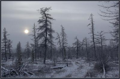 Холодное время года — время депрессий!