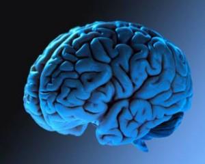 Депрессия и стрессы делают мозг человека легче
