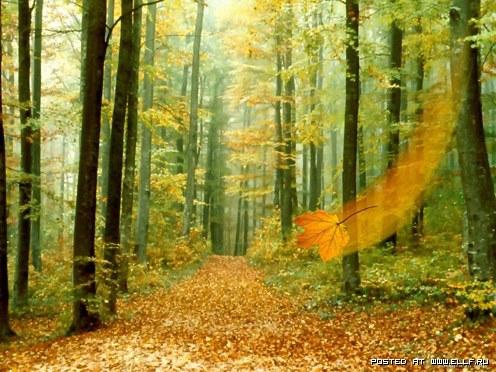 Осень — время года или период обострения депрессии