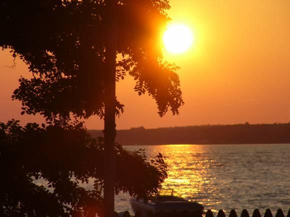 Витамин солнца задал загадку ученым которая требует дополнительных исследований