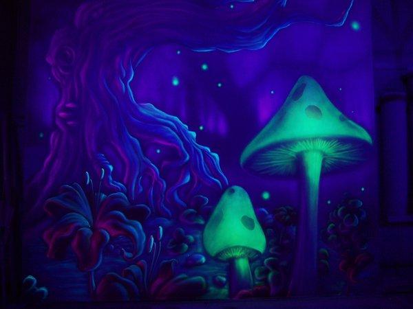 Чудо грибы предложили использовать в качестве антидепрессантов