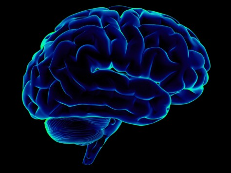При стечении определенных обстоятельств головной мозг может уменьшаться в объеме в пожилом возрасте