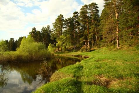 При лечении депрессии, что бы улучшить память и поднять настроение нужно совершать регулярные прогулки в окружении природного ландшафта