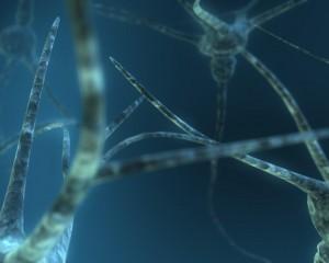 Удалось обнаружить группу нейронов, что являются ответственными за появление депрессивного состояния