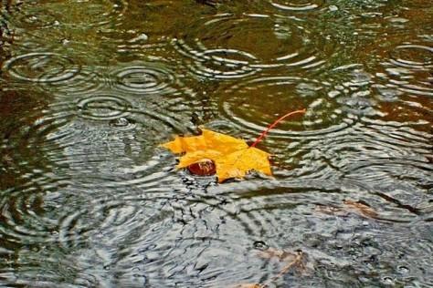 Как справиться с хандрой в дождливую погоду