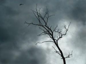 Эффективная профилактика осенней депрессии: советы