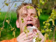 Аллергия на пыльцу увеличивает риск депрессии