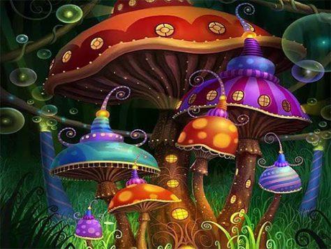 Галлюциногенные грибы вылечат депрессию