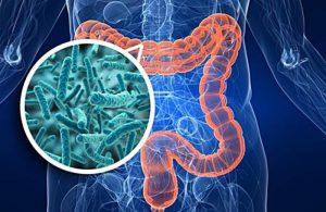 Ученые обнаружили связь между кишечными бактериями и депрессией