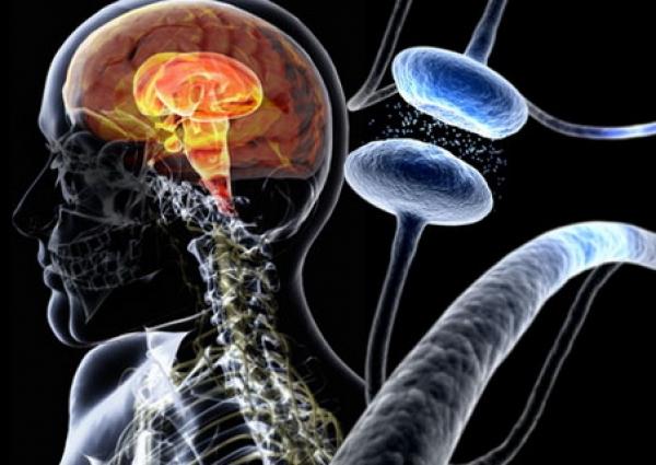 У людей с диагнозом болезни Паркинсона чаще развивается депрессия