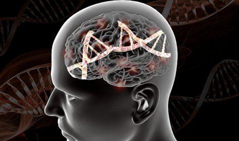 Как найти шизофрению в геноме