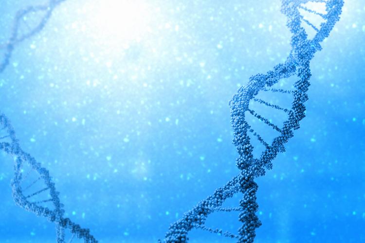Возникновение аутизма связано с генами