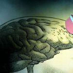 Связь стресса и памяти