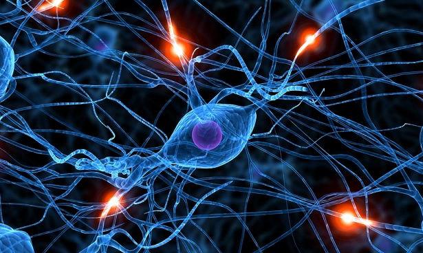 Сделаны важнейшие открытия для лечения рассеянного склероза