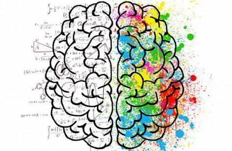 Тест RT: мифы и факты о мозге
