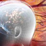 Стресс, глюкокортикоиды и нейроны гиппокампа