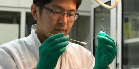 Китайские ученые открыли новый механизм зрительного восприятия в головном мозге человека