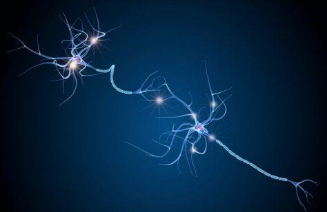 Российские нейробиологи обнаружили вероятную причину шизофрении