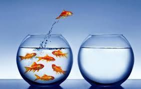 Как влияет самооценка на поиск работы