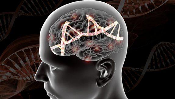 Выявлены гены, вызывающие шизофрению
