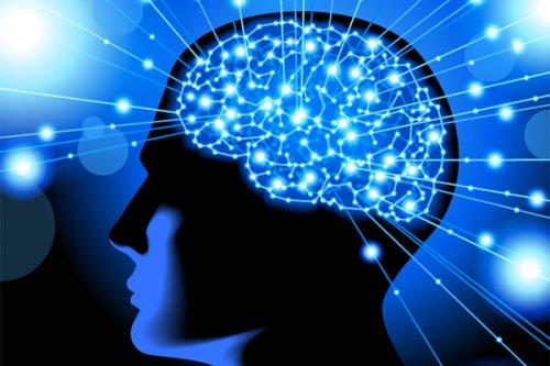 Найдены нейроны мозга, отвечающие за депрессию