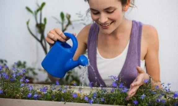 Эти изменения в домашнем интерьере помогут избежать депрессии