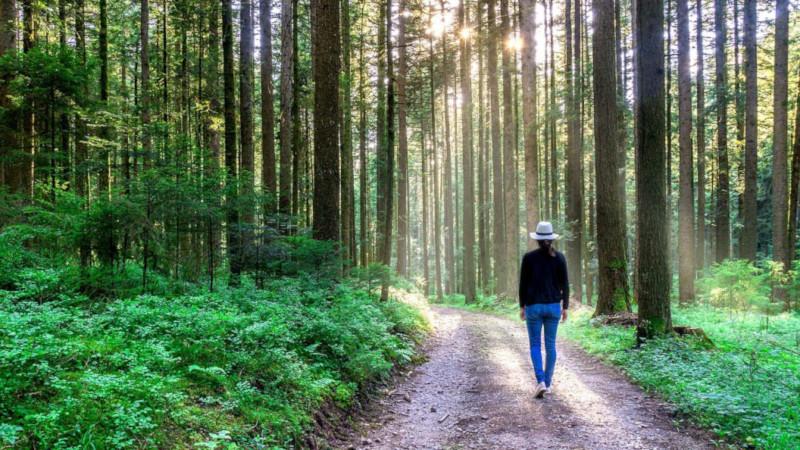 Психологи нашли простой и эффективный способ снять стресс
