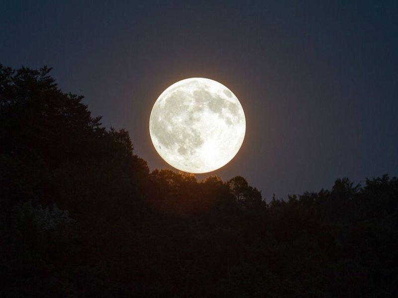 Гипотеза о влиянии фаз Луны на психику человека не подтвердилась