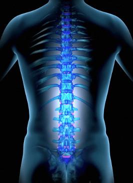 Чем могут быть вызваны боли в спине?